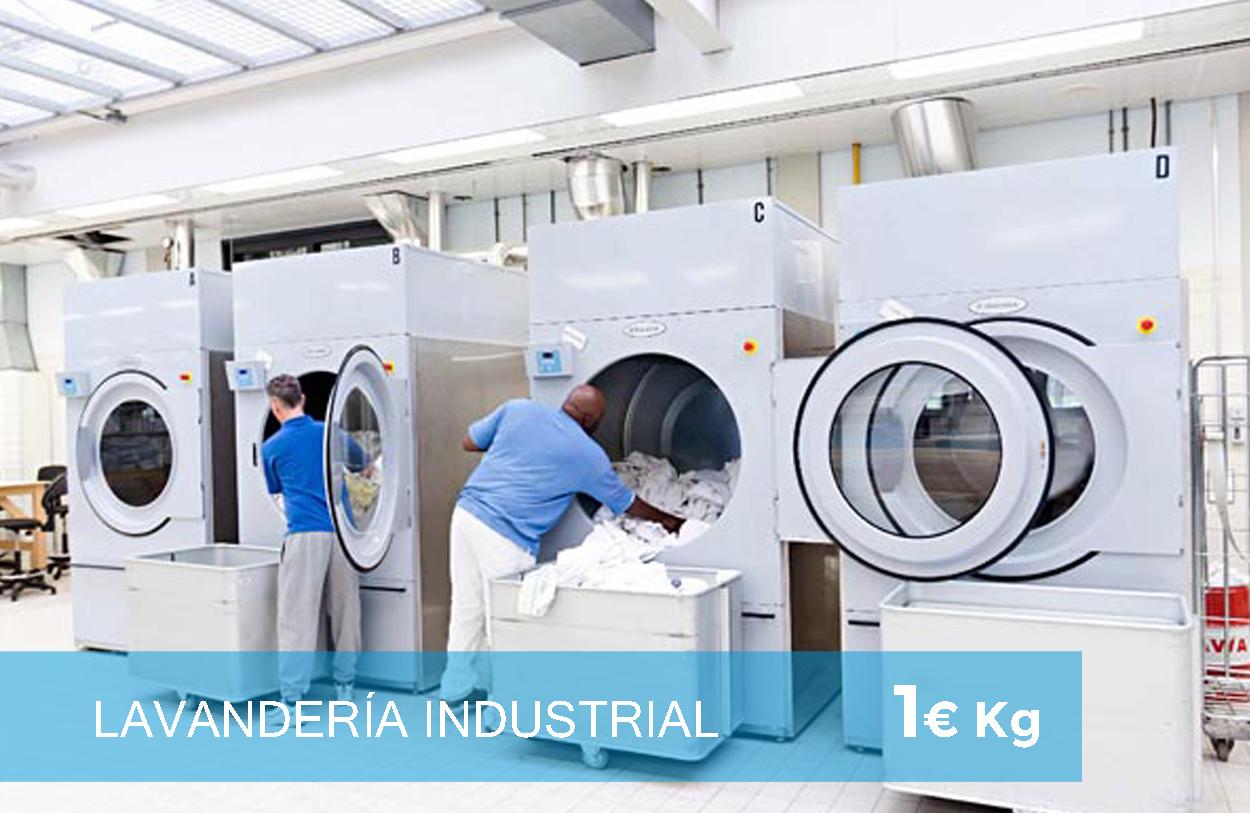 Lavandería y tintorería industrial