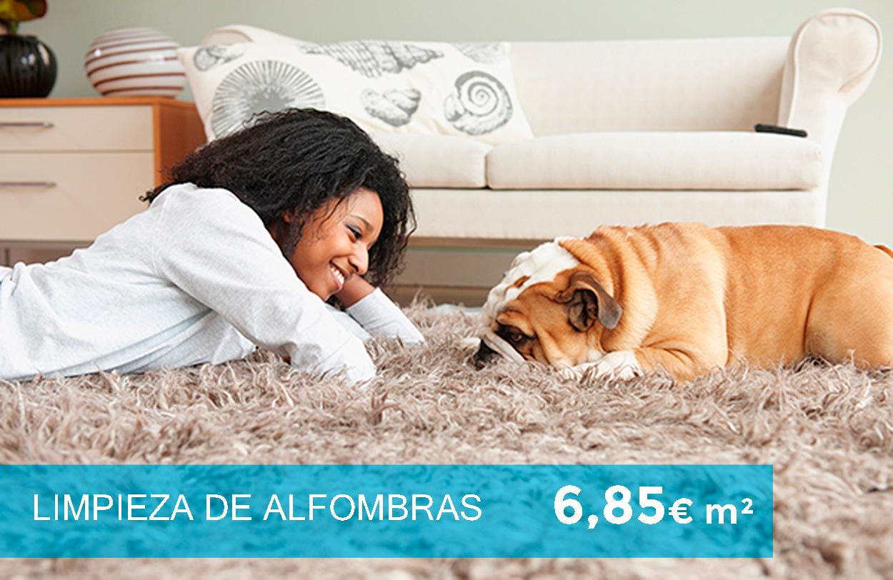 Limpieza de alfombras 6,85€ m2