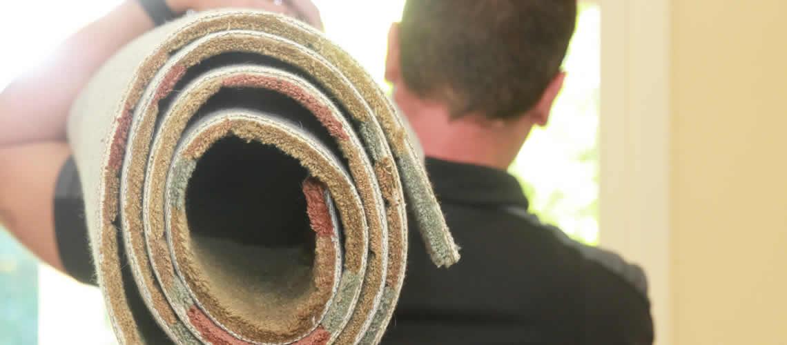 Oferta limpieza de alfombras